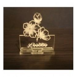 Fleurs marque place 2013 avec gravure
