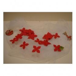 50 confettis 1761