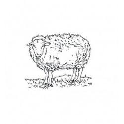 Tampon mouton TC175 vendu non monté