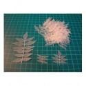 feuilles ba027 pour vous faire beau fond de page