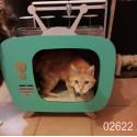 Maison télé chat 02622 lit moderne, meuble pour animaux